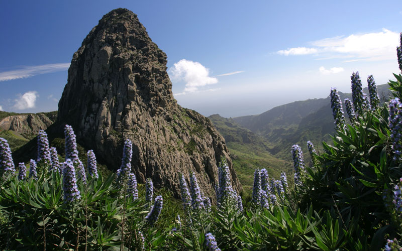 Natural areas of La Gomera (Canary Islands)