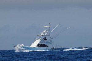 Nell Magic, un bateau conçu pour la pêche a gros