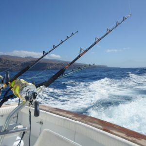 Big game fishing in La Gomera (Canary Islands)