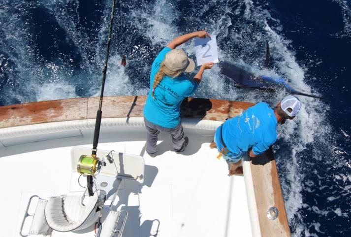 la-gomera-big-game-fishing-tournament-june-2016-2
